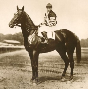 Man O'War posted by David Lilenfeld